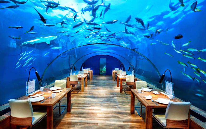 بهترین رستورانهای زیر آب+ عکس