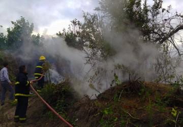 مهار آتش سوزی تالاب چپرپرد پایین