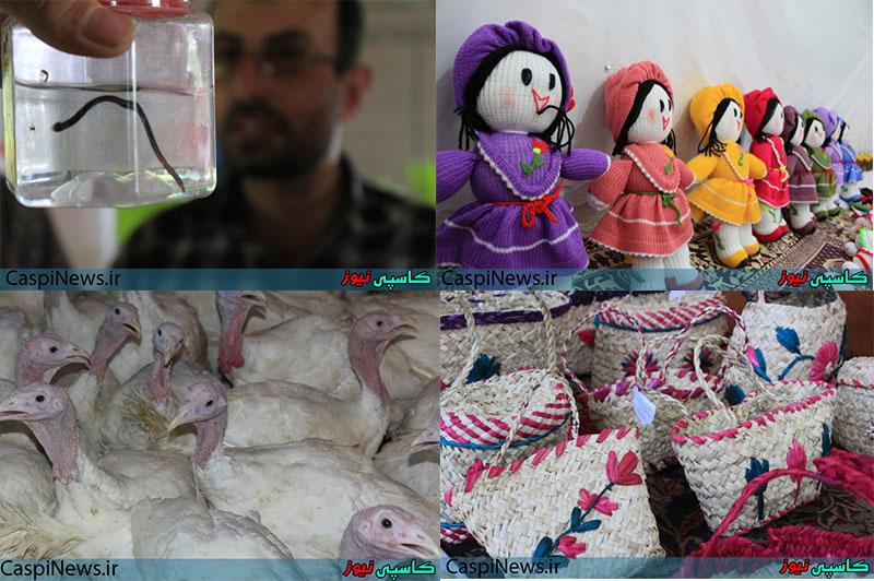 بازدید اصحاب رسانه از تعاونی ها و مراکز اقتصادی روستایی به روایت تصویر