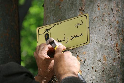 پلاک کوبی درختان بوستان مفاخر به نام شهدا +تصاویر
