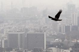 پیشنهاد فرانسه برای پیشبینی آلودگی هوای تهران