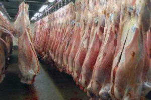 توزیع گوشت ۲۲هزار تومانی به وفور در بازار/مشکل گرانی ۲ روزه حل می شود