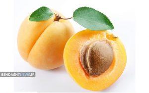 پرخاصیتترین میوه برای روزهداران