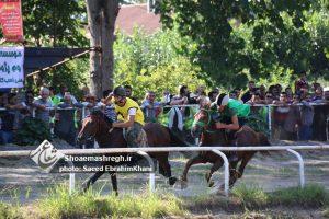 مسابقات سوارکاری کورس تابستانه در گیلان برگزار شد/گزارش تصویری