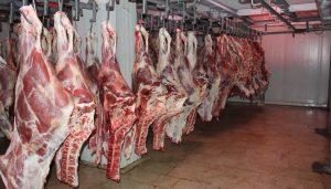 ۱۸۰ کیلوگرم گوشت گاو فاسد در ماسال کشف و ضبط شد