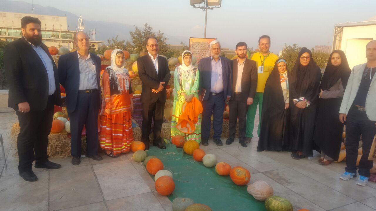 بازدید فرماندار رشت از غرفه های جشنواره شب های فرهنگی رشت