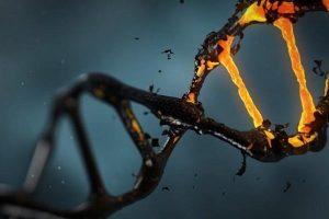 شناسایی هویت افراد با DNA در چند دقیقه