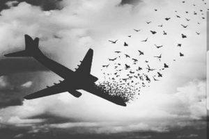 اپراتور موبایل امکان مکالمه پایدار در پرواز آسمان را تایید کرد/ جزئیات فنی وضعیت آنتنی که در هواپیما پوشش داشت