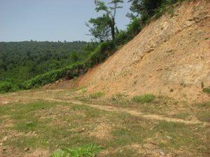۸ ماه محکومیت حبس به جرم تخریب محیط زیست در شهرستان فومن