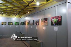 """گزارش تصویری نمایشگاه عکس """"دیوارها را برداریم…"""" در نگارخانه مارلیک رشت"""