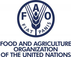 فائو خواستار تحول در نظامهای کشاورزی برای حفاظت از محیط زیست شد