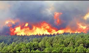 آمادهباش منابع طبیعی گیلان برای مقابله با آتشسوزی در جنگلها