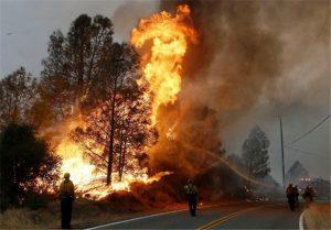 یک هکتار پوشش گیاهی پارک ملی بوجاق در آتش سوخت