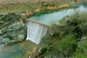 آبخیزداری و آبخوانداری به تقویت پوشش جنگلی کمک میکند