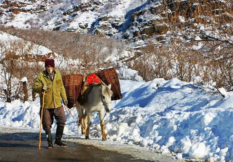 برف پائیزی روستاها در شرق گیلان را سفیدپوش کرد