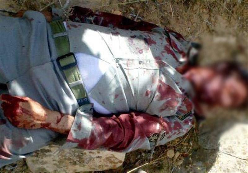 درگیری شکارچیان غیرمجاز با ۲ محیطبان گیلانی؛ حال یک محیطبان وخیم است
