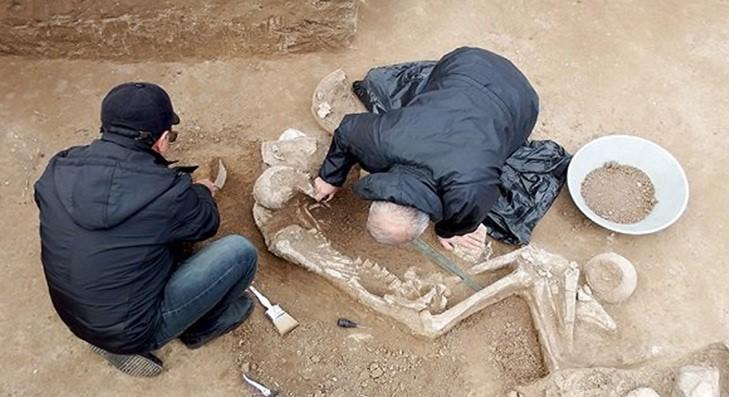 جزئیاتی درباره کشف گور جنگاور ۳۰۰۰ ساله در رستم آباد