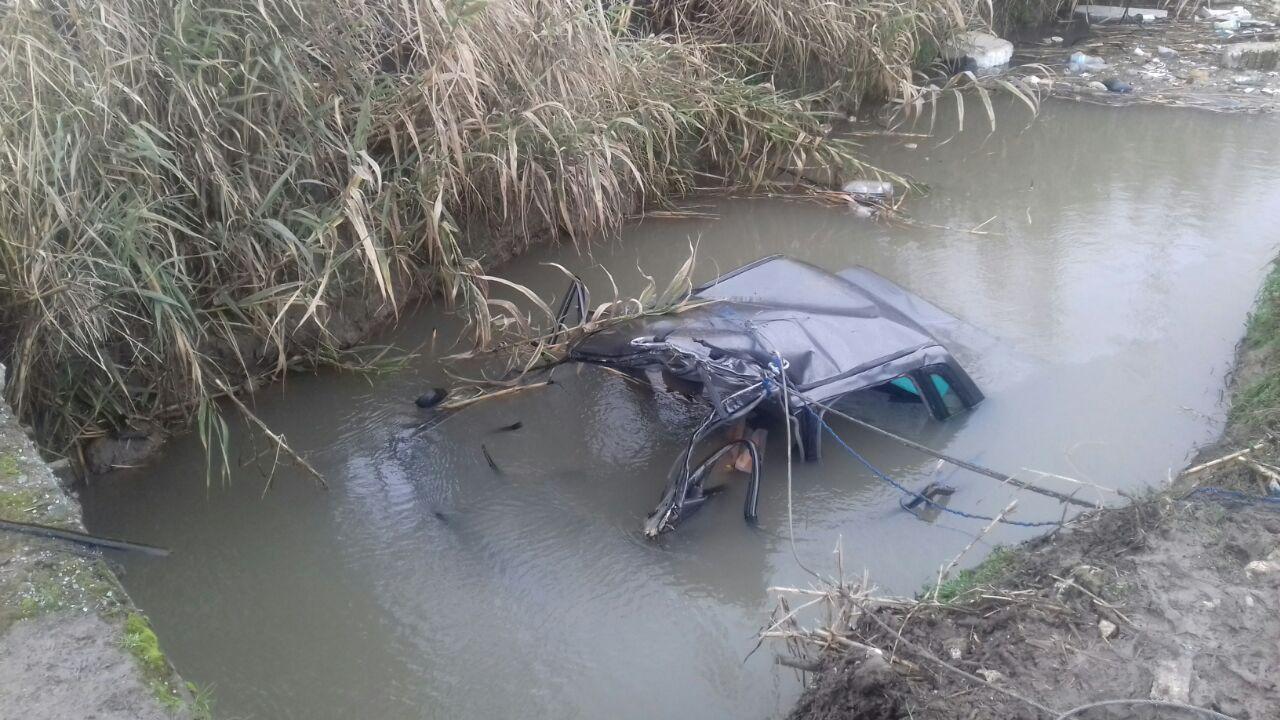 سقوط ناگهانی درخت،راننده خودرویی را در گیلان به کام مرگ کشید