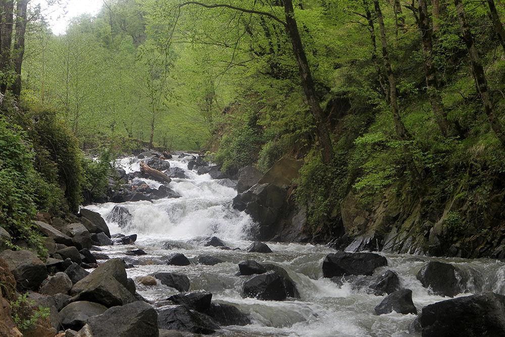 کارهای موفقی در مهندسی رودخانههای گیلان انجام شده است