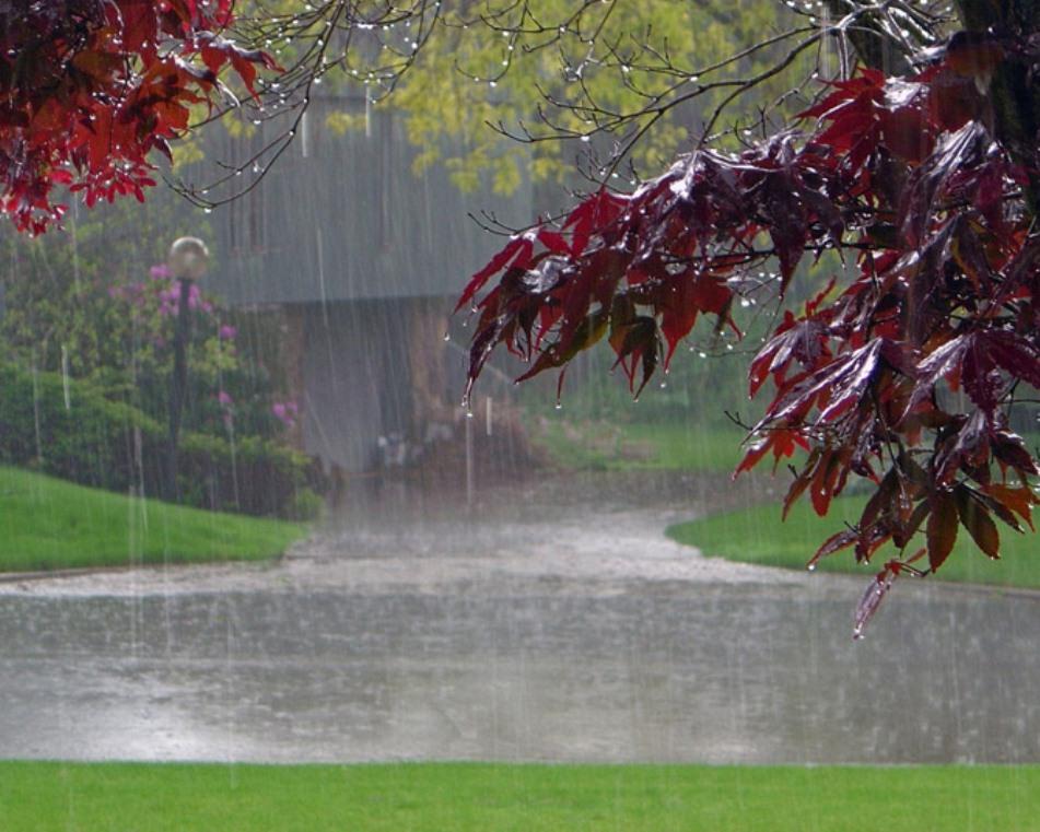 وضعیت بارش پاییز ۹۸ پیشبینی شد