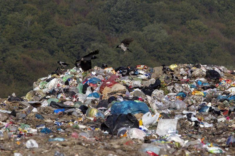 دوئل ناتمام جنگل زیبای سراوان با زبالهها