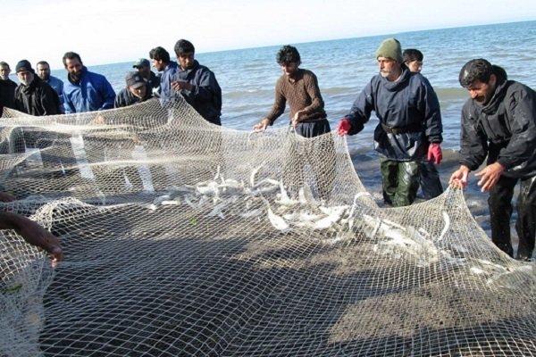 آغاز صید ماهیان استخوانی از دریای خزر/ ۴ هزار صیاد فعال هستند