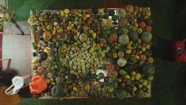 تصاویر سومین روز از برگزاری چهارمین جشنواره کدو در پیاده راه فرهنگی رشت